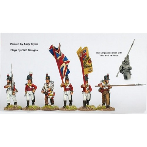 Infantry command marching 1808-14