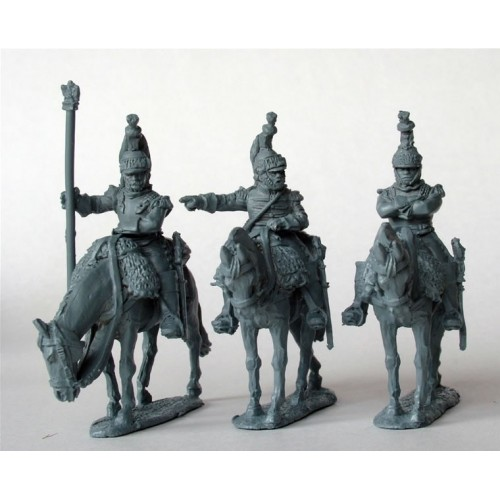 Cuirassier Command on standing horses in reserve