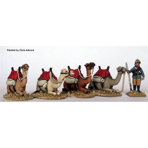 Kneeling camels