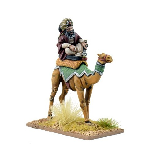 Mutatawwi'a Warlord on Camel