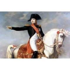 Napoleónicos
