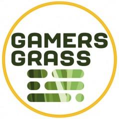 Gamer's Grass